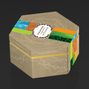 Package Design - Diwali gift box design for Total Environment, Bangalore.